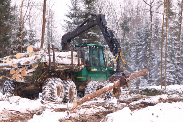 Extraction of timber in the Komenda industrial zone
