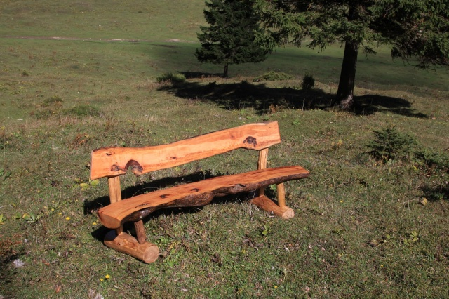 bench - pear tree